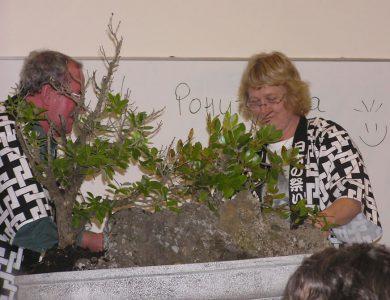 Planting the Pohutukawas